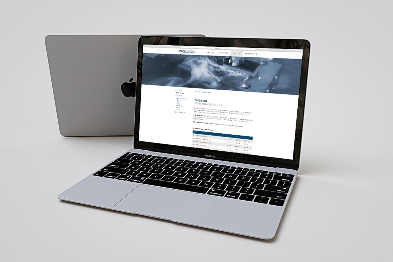 Haunschmidt Webseite