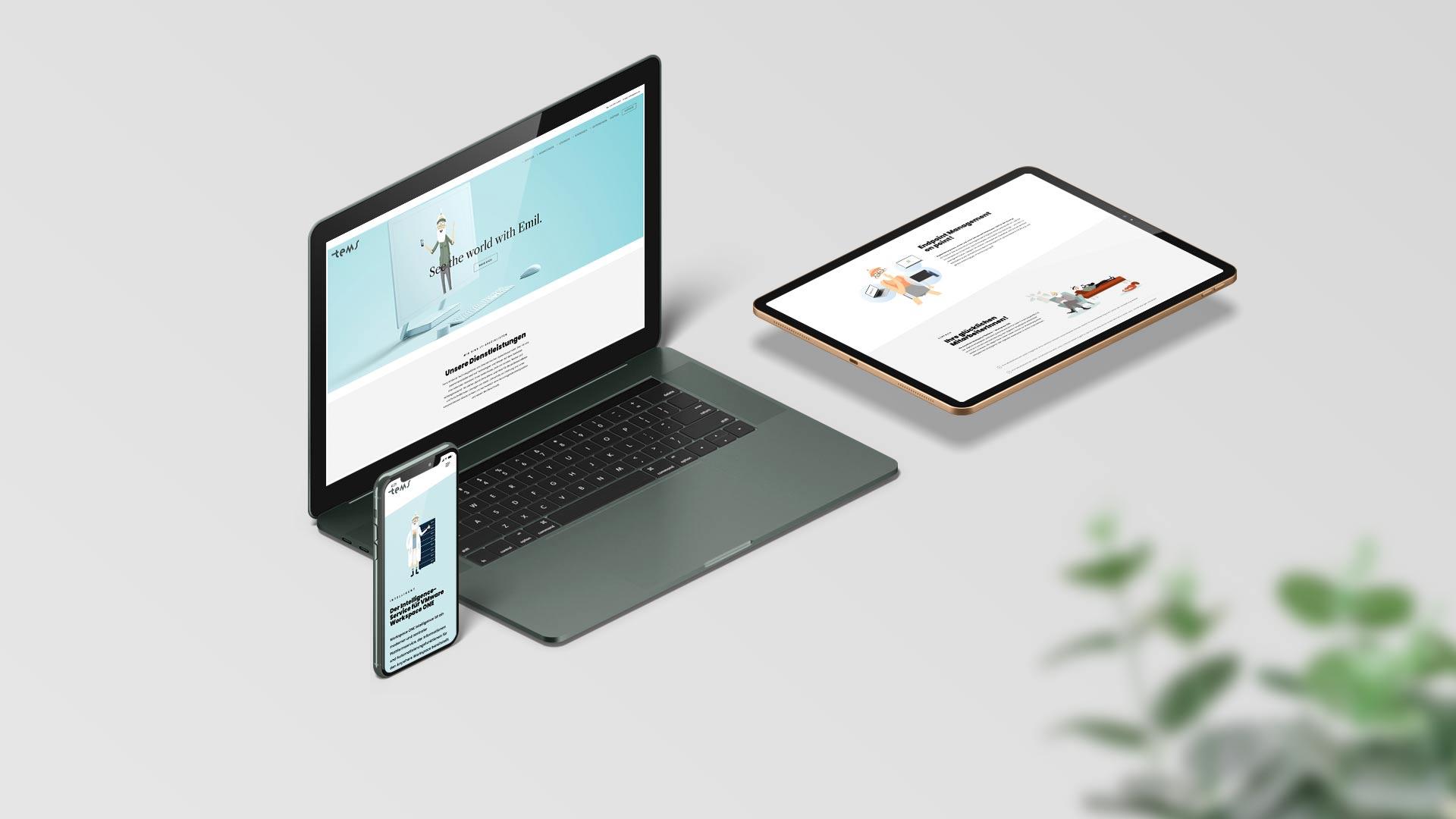Tems Website Relaunch